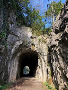 tunel clam silent